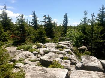 Mile 31 boulder hopping
