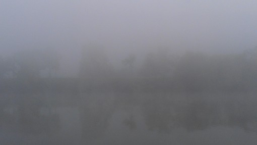 Misty morning along the Mon River.