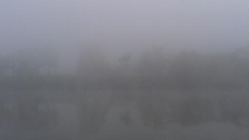 Misty morning along the Mon River.