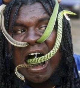 snakeface