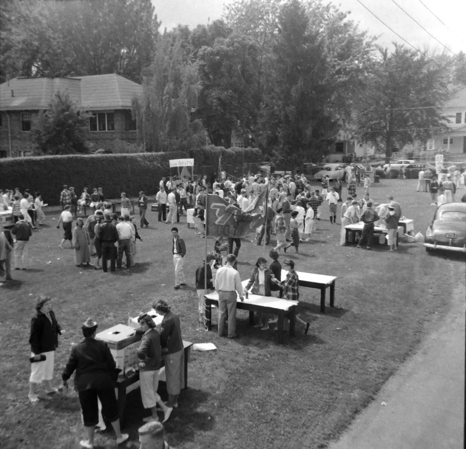 Image result for community picnic chicago 1956